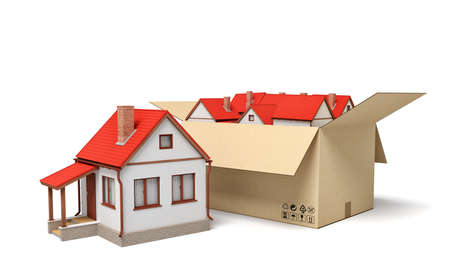 3d rendering of detached houses in carton box.