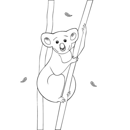The Koala clutched a dry eucalyptus trunk. Leaves fall to the ground. Vector. Outline on an isolated background. Coloring book for children and adults. Doodle style. Idea for a book, magazine, or web design. An animal from Australia. Colorless image. Illustration