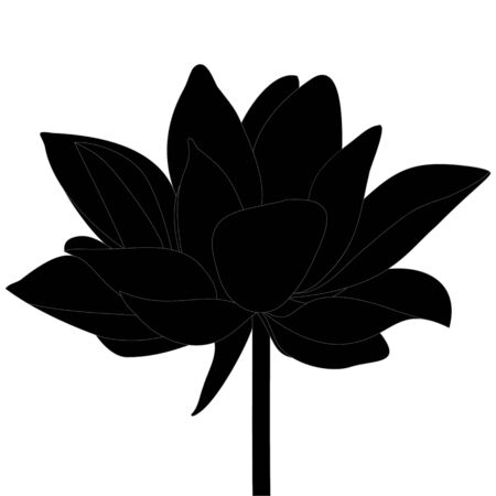 Vector stock illustration lotus. Water lily. Plant silhouette on an isolated background. The idea of creating a greeting card, invitation. Flower sketch.