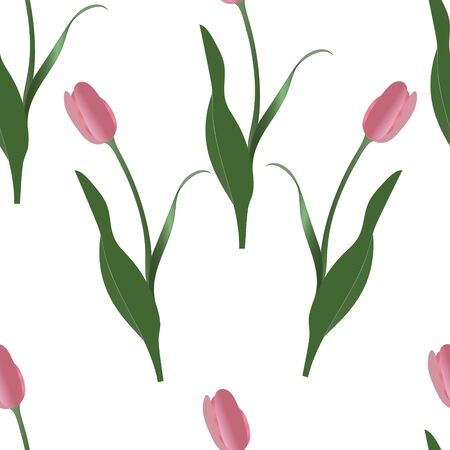 Endless vector pink tulip pattern. Spring clearing. Plant on an isolated background. Idea for wallpaper, cover, decoration. Floral print. Иллюстрация