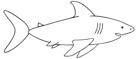 Shark. Vector illustration. Outline on a white isolated background. Large predatory sea fish. Hand drawing style. Sketch Coloring book for children and adults. Underwater monster with toothy jaw. Idea for web design, books. Çizim