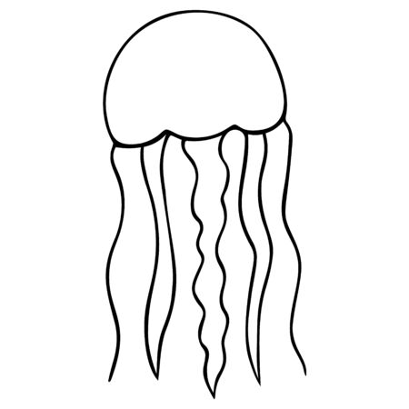 Jellyfish Eared Aurelia. Vector illustration. Outline on a white isolated background. Inhabitant of the ocean. Marine invertebrate animal with tentacles. Hand drawing style. Sketch Coloring book for children and adults. Idea for web design, books.