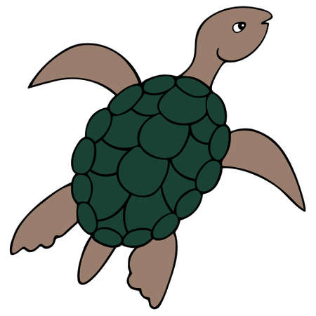 Turtle. Marine reptile with shell. Ocean dweller. Colored vector illustration. White isolated background. Cartoon style. Idea for web design, sticker, book. Waterfowl turtle with an oval shell. Illustration