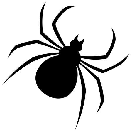 Silhouette of Spider vector illustration on white