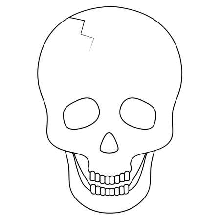 Human skull. Sketch. Crack in the forehead. Vector illustration. Bone frame of the head. Outlined on an isolated background. Halloween symbol. An integral part of the skeleton. Jaw with straight teeth 向量圖像
