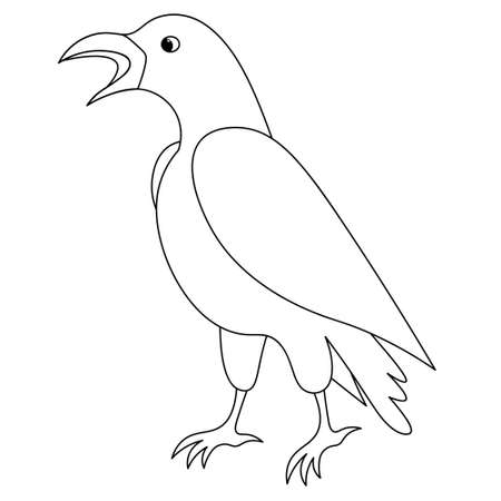Raven. Sketch. Coloring book for children. Vector illustration. The mystical black bird croaks. Outline on an isolated background. Halloween symbol. Doodle style. Messenger of the underworld.