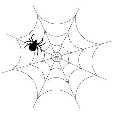 The spider is hiding on the web. A clever hunter. Insect silhouette. Vector illustration.