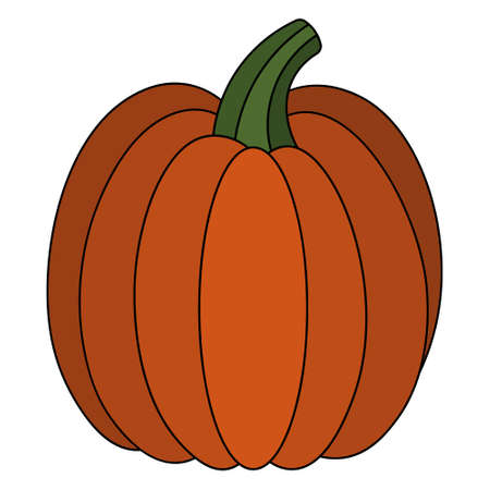 Pumpkin. Delicious vegetable. Colored vector illustration. Isolated white background. Cartoon style. Vegan food. Orange vegetable. Harvesting. Seasonal organic product. Idea for web design.