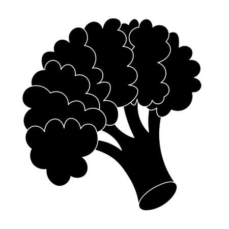 Broccoli. Silhouette. Inflorescence of asparagus cabbage. Vector illustration. Isolated white background. Cartoon style. Icon. Blooming stem. Vegan food. A healthy vegetable. Harvesting.
