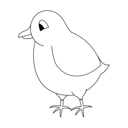 Chick. Sketch. Vector illustration. Coloring book for children. Chicken cub. Cute chick. Outline on white isolated background. Doodle style. Festive print. Idea for web design, invitations, postcards.