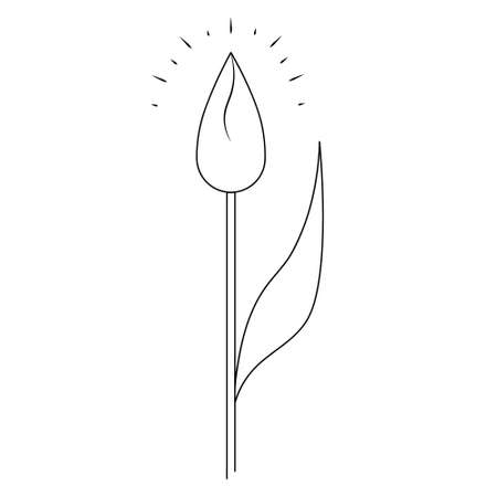 Tulip. Sketch. Closed bud. The delicate flower shines. Vector illustration. Coloring book for children. Nice plant. Doodle style. Outline on an isolated white background. Light Easter. Ilustração