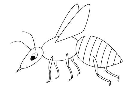 Wasp. Sketch. A small fly with a sting. Vector illustration. Coloring book for children. An insect with wings. Outline on white isolated background. Doodle style. Festive print. Idea for web design.