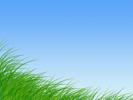 rural area: Green grass under clean sky
