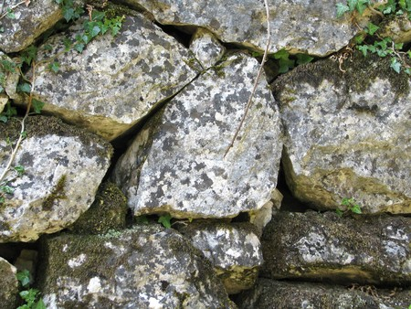 Wall stones with a flora Stock Photo