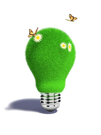 Light bulb with grass, flowers and butteflies in XXXL size isolated on white Stock Photo