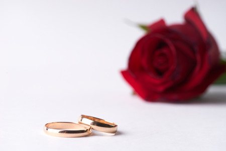 Close-up of a beautiful romantic red Rose with two wedding gold rings isolated on white background with copy space. Love and marriage proposal concept. Stock Photo