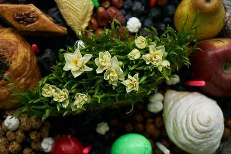 Novruz tray with Azerbaijan national pastry pakhlava,  shekerbura, gogal, badambura and dry snacks with green semeni wheat grass on rustic wooden table background