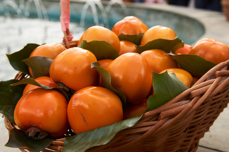 Persimmon fruits and persimmon leaves in a wicker basket. Agriculture and harvesting concept 스톡 콘텐츠