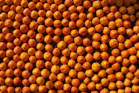 Fresh juicy persimmons fruit
