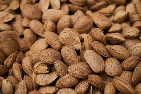 Dried almond in shell texture background. Unpeeled almond nuts , close-up