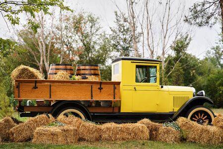 Pickup Truck with Wine Barrels on vine yard field. Winery, wine making concept