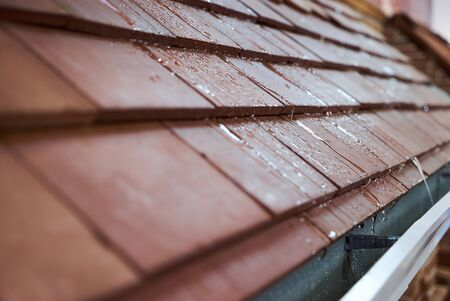 Wet tile roof of the house, close-up. Modern tile roof with rain drops Stok Fotoğraf