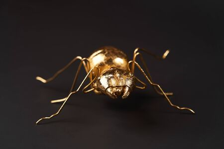 Golden ant toy on black background with copy space. Golden ant , close-up