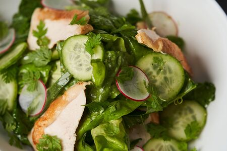 Farm chicken salad romaine lettuce and tarragon pesto. Healthy fresh chicken breast salad with radish, cucumber and herbs, close-up