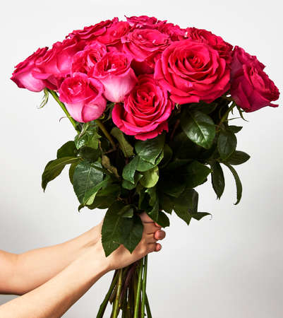 Hand holding a bouquet of pink roses on white background with copy space. Giving a beautiful red rose bouquet flower. Valentines day flowers