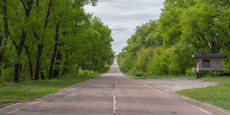 fallout: Lush green forest on either side of the road leaving in and out of Chernobyl Stock Photo