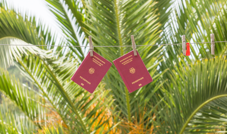 Two German passports hanging on clothes lines in front of a large palm tree