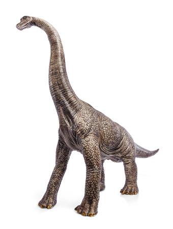ブラキオサウルス恐竜のおもちゃは、クリッピングパスと白い背景に隔離されています。