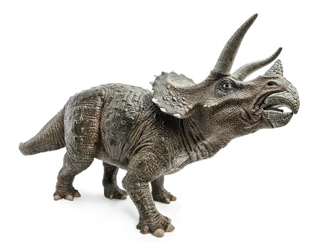 Wide view of Triceratops dinosaurs toy isolated on white background w Stock Photo