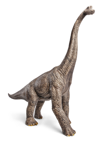 Brachiosaurus dinosaurs toy isolated on white background with clipping path. Archivio Fotografico