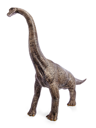 Brachiosaurus dinosaurs toy isolated on white background with clipping path. Stock Photo
