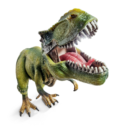 Front Wide View of Tyrannosaurus, dinosaurs toy isolated on white background Stock Photo