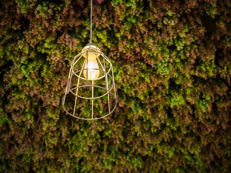 hanging lamp: modern wire-frame hanging lamp