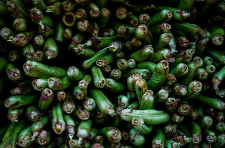 long beans: Chinese vegetable stand - long beans