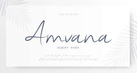 Elegant script alphabet letters font and number. Classic Lettering Minimal Fashion Wedding Designs. Typography fonts regular set. vector illustration