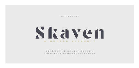 Elegant awesome alphabet letters font and number. Classic Lettering Minimal Fashion Designs. Typography fonts regular uppercase and lowercase. vector illustration Illusztráció