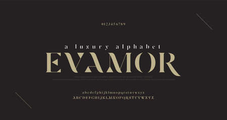 Elegant luxury alphabet letters font and number. Classic Lettering Minimal Fashion Designs. Typography fonts regular uppercase and lowercase. vector illustration Illusztráció