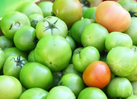 Pickle green tomatoes in a supermarket photo