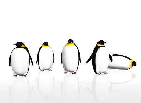 polar life: a group of penguin birds on white background Stock Photo