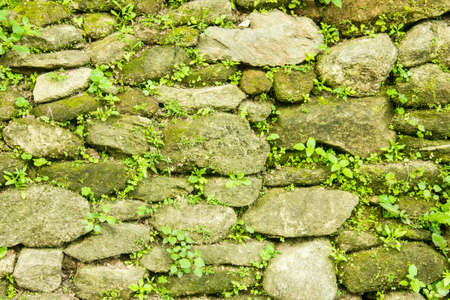 wall background: Stone wall background Stock Photo