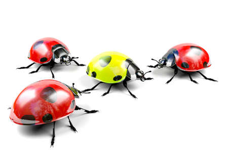 contradiction: Yellow ladybug among red ladybugs Stock Photo