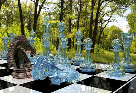 contradiction: Chess board game competition in forest garden Stock Photo