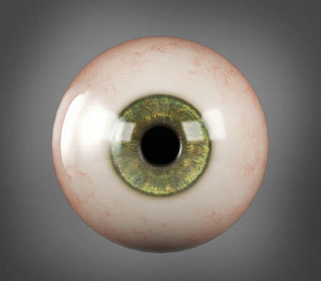 Realistic human eyeball green iris pupil isolated
