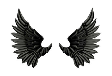 black wings: Black wing isolated Stock Photo