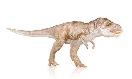 tyrannosaurus rex: Tyrannosaurus Rex, dinosaurio aislado en el fondo blanco