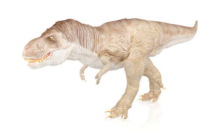 tyrannosaurus: Tyrannosaurus Rex, Dinosaur isolated on white background